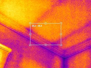 FLIR Thermal Imaging Albert Lea MN